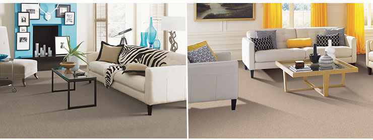 Innovia Touch Xtreme clean carpets living room