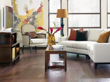 laminate flooring in st. paul